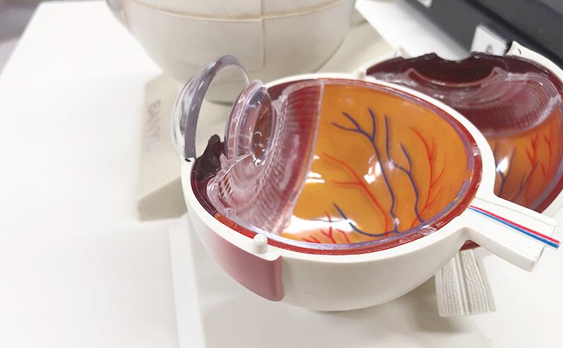 京都市の眼科専門医